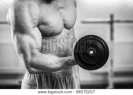 Muscular guy working with free weights. Work on the arm muscles