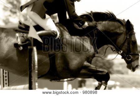 Equestrian Power & Action  Show jumping