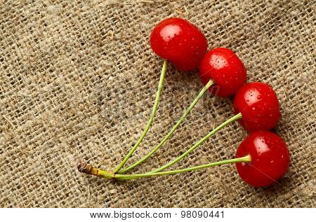 Bunch Of Four Cherries Over Bag