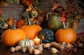 stock photo of gourds  - Still life harvest with pumpkins nuts and gourds for Thanksgiving - JPG