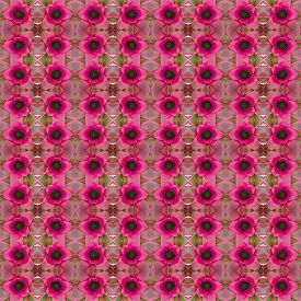 foto of bromeliad  - Bromeliad flower seamless pattern background - JPG