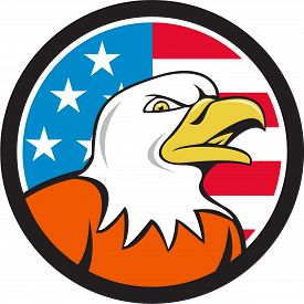 foto of bald head  - Illustration of an american bald eagle head angry looking to the side set inside circle with usa flag stars and stripes in the background done in cartoon style - JPG