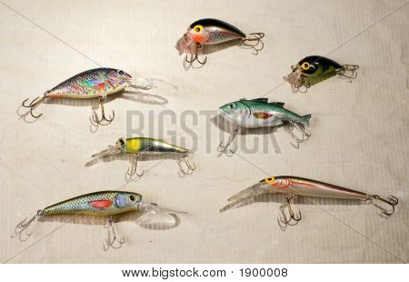 Artificial Fishes