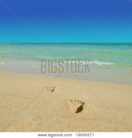 Footprints on a tropical beach