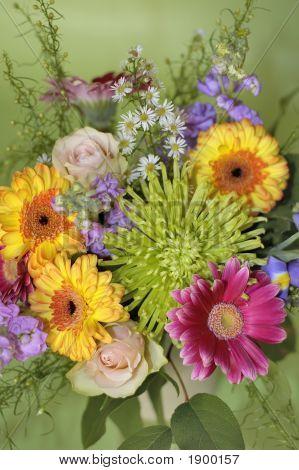 June Bouquet Of Colors