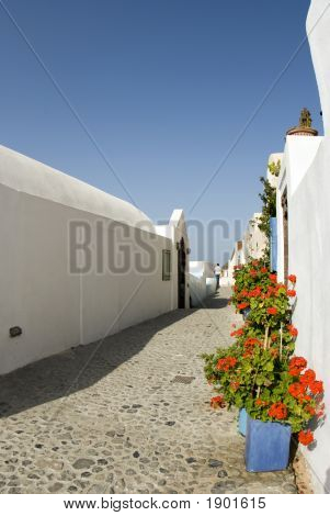 Street Scene With Flowers Greek Islands