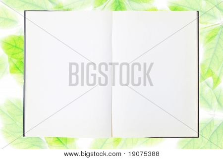 Notebook And Branches Of Tree
