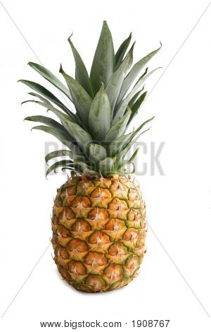 Ananas. Delicious Fruits, Still Life