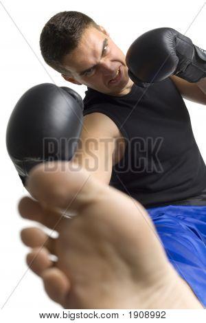 Kämpfer Kick