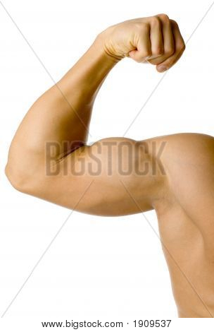 Male Flexed Arm