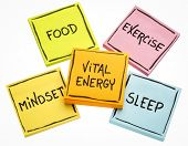 vital energy concept - food, exercise, mindset and sleep handwritten on colorful sticky notes isolat poster