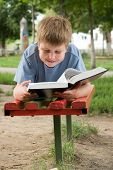 image of school child  - schoolboy reads the book on a bench in park - JPG