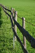 Fence Bordering Green Meadow