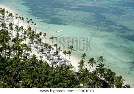 Tropical Beach With Palms And White Sand