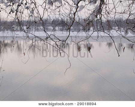 Día de invierno en el lago con la reflexión de la nube