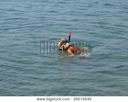 Little girl snorkeling