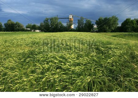 Landscape at springtime with crops field and a factory in the background