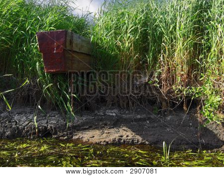 River, Boat And Bulrush