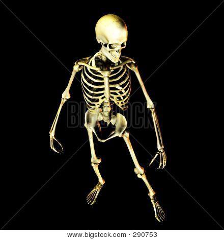 Bone 2 Copy