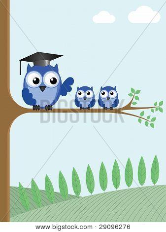 Baum Eule Lehrer