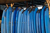 Set Of Blue Color Soft Surfboards In A Stack By Ocean.bali.indonesia. Surf Boards On Sandy Beach For poster