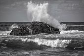 Black And White Seascape, Sea Wave Breaks On A Black Stone, White Spray, The Power Of The Ocean poster