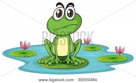 ilustration of sad and green frog in water with lotus