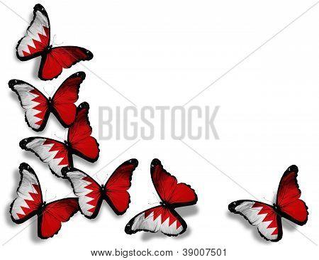 Bahraini Flag Butterflies, Isolated On White Background
