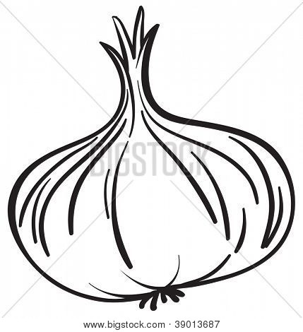 Illustraiton of a simple vegetable illustration on white