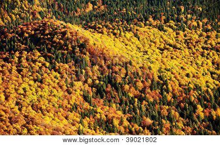 Autumn landscape in Bucegi Mountains, Romania, Europe