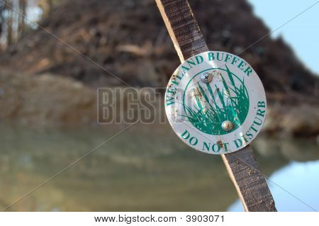 Wetland Buffer