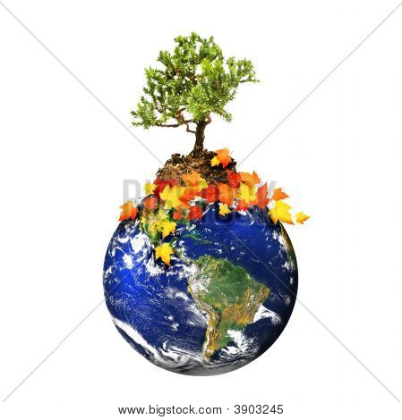Earth With A Tree Isolated Over A White Background