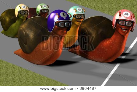 Toon Racing Snails