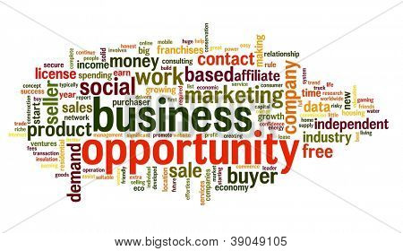 Business opportunity concept in word tag cloud on white background
