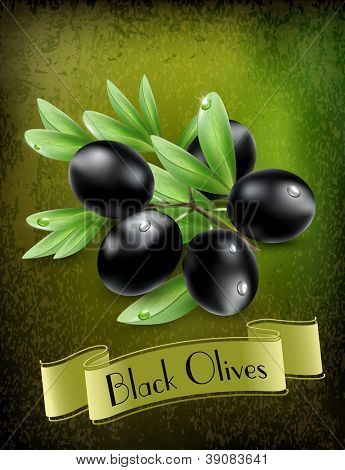 vector background with black olives and a ribbon