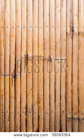 Bamboo Wood Pattern In Row