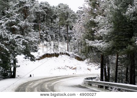 Snowing In The Pine Forest, Frozen Road