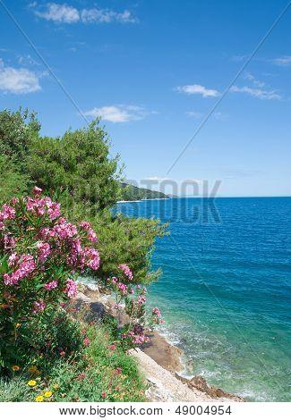 Coastal Landscape,Makarska Riviera,Croatia