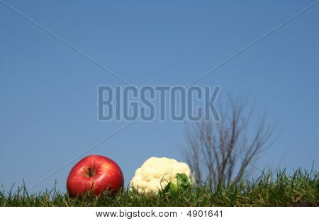 Apple And Mini Caulif-flower In Grass
