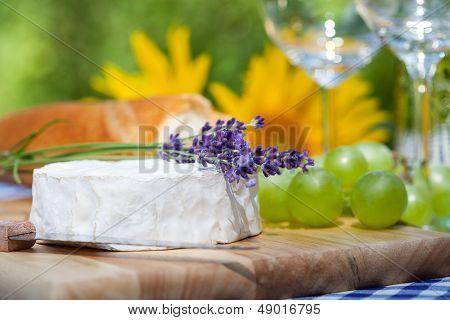Lavender And Camembert