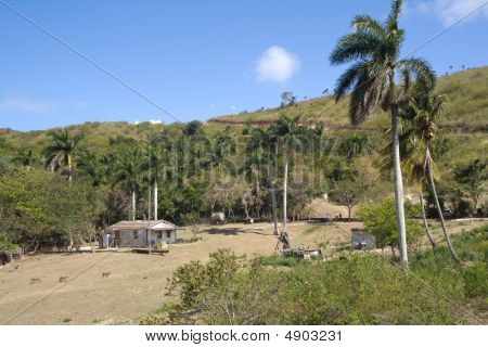 Typical Cuban Country Landscape