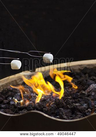 Roasting Marshmallows over the fire at night