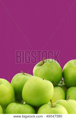 """freshly harvested """"Granny Smith"""" apples on a purple background with copy space"""