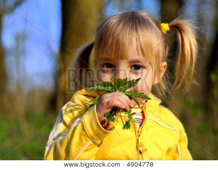 Little Girl And Wild Flowers