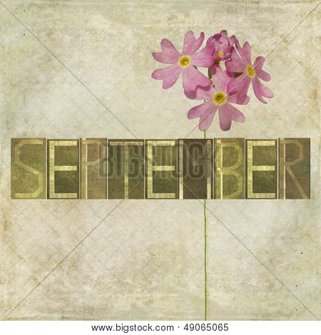 Earthy background and design element depicting the word for the month of September