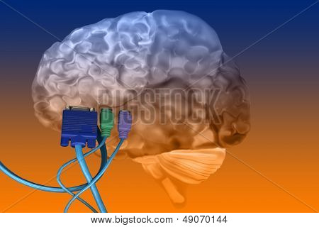 Brain With Cables Plugged In