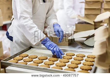 Fábrica de biscoitos