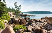 stock photo of shoreline  - This image shows a beautiful combination of foliage rocks water and sky on the shoreline of Acadia National Park - JPG