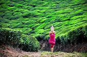 stock photo of garuda  - Yoga garudasana eagle pose by woman in red cloth on tea plantations in Munnar hills Kerala India - JPG