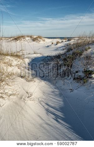 Unspoiled Sand Dunes And Ocean Landscape